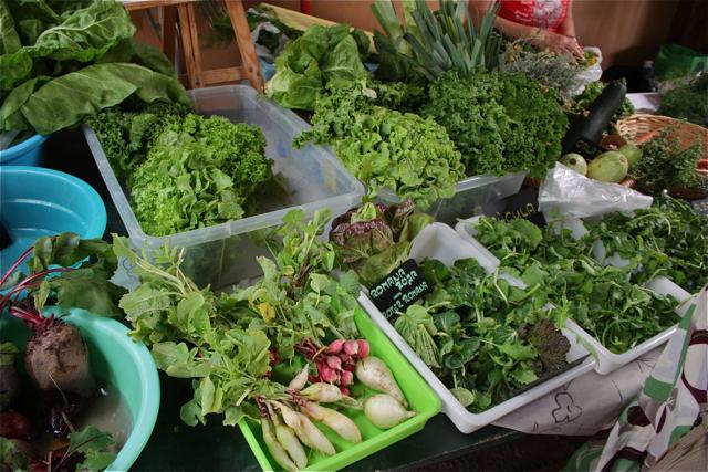 markt auf fuerteventura